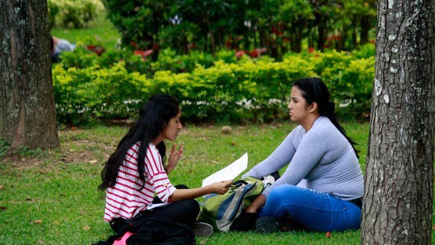 El placer de estudiar
