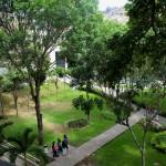 Jardines de la UCAB