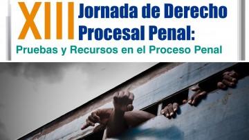 Pruebas y recursos en el proceso penal