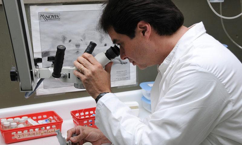 Profesor Víctor Tortorici es premiado como investigador