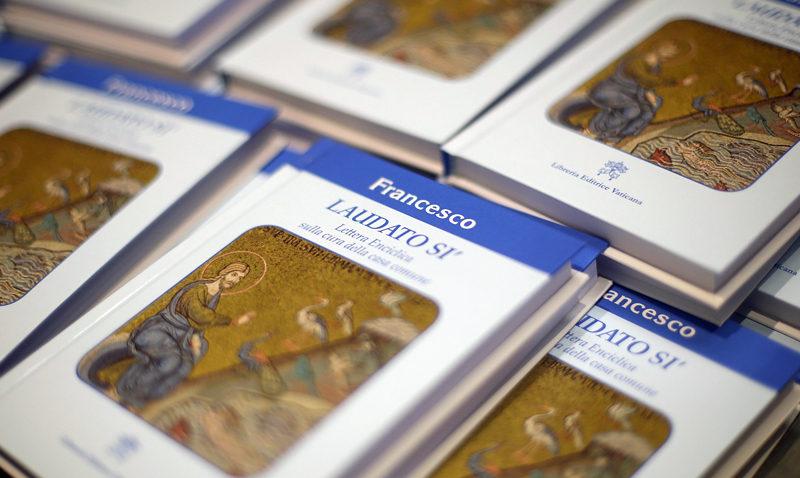 Descifrando la Carta Encíclica Laudato si'