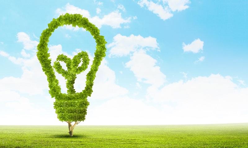 Abiertas postulaciones para el diplomado ambiental