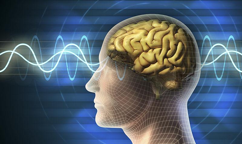 La influencia de la ciencia en el comportamiento