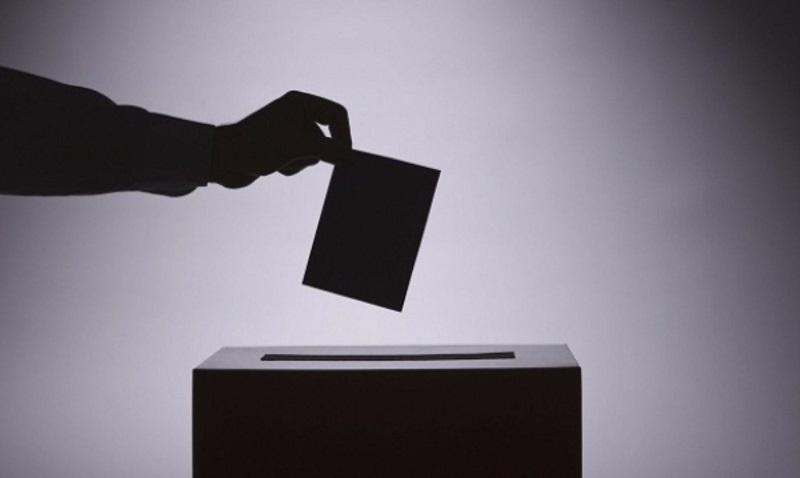 Plebiscito y Democracia