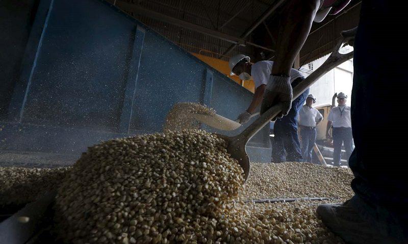 De pobres a productores