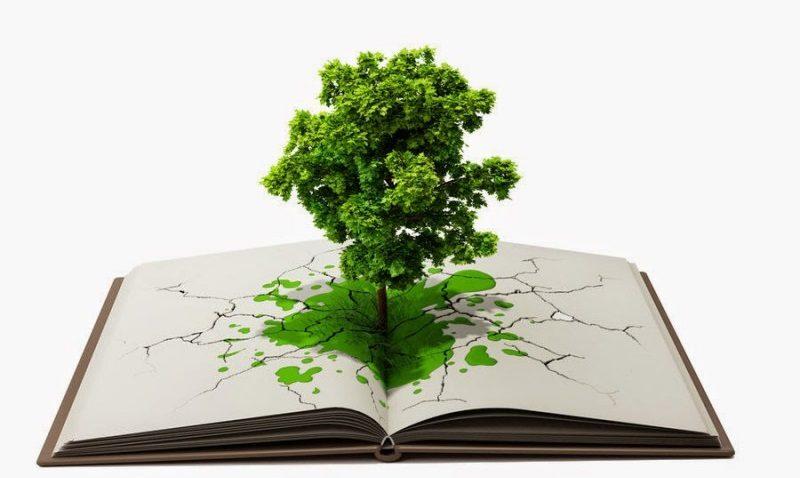 Ecología, ambiente y sustentabilidad en las aulas