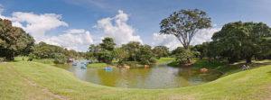 800px-venezuela_-_caracas_-_parque_del_este_58-venezuela_-_caracas_-_parque_del_este_72-4