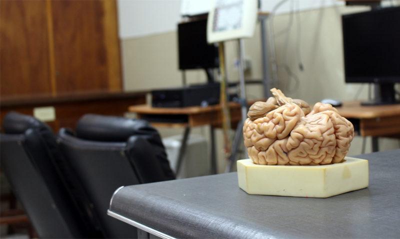 Escuela de Psicología moderniza sus laboratorios de formación