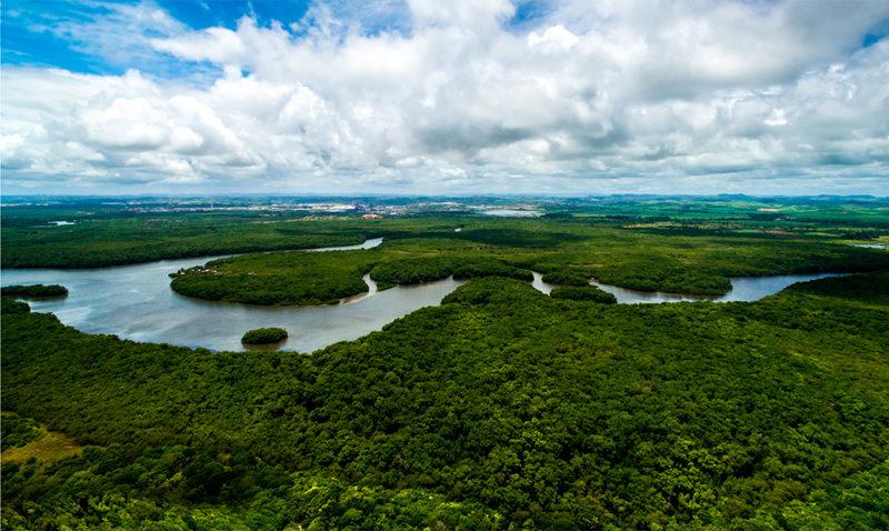 UCAB Guayana aportará datos a informe de la CIDH sobre la Amazonía