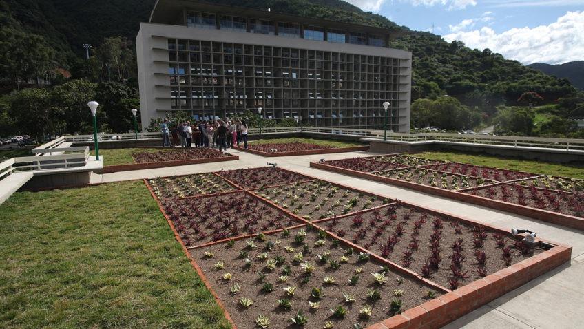 El Techo Verde de la UCAB ya es una realidad y está abierto a visitas pedagógicas