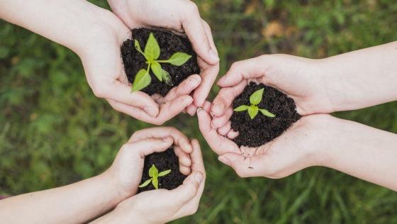 Showroom de sostenibilidad llega a la UCAB
