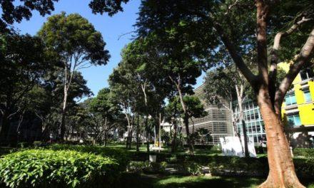 La UCAB nuevamente entre las 100 universidades más sustentables de Latinoamérica